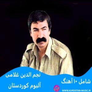 آهنگ کردی دلداری نجم الدین غلامی,آهنگ کردی قدیمی