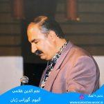 آهنگ کردی بهاره بولبول بهاره نجم الدین غلامی,آهنگ کردی قدیمی
