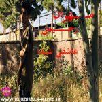 مهران رحیمی عاشقی شیدا,دانلود آهنگ مهران رحیمی با نام عاشقی شیدا,Mehran Rahimi Ashghi Shayda