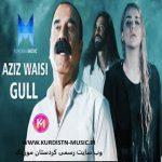 عزیز ویسی گول(گل),دانلود آهنگ عزیز ویسی با نام گل(گول),Aziz Waisi – Gull