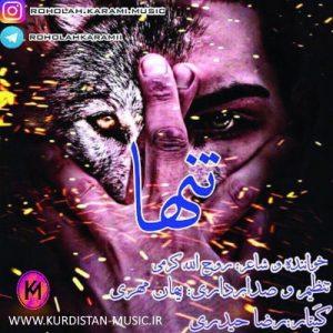 آهنگ دواره غم داسه دلم روح الله کرمی,دانلود آهنگ روح الله کرمی با نام تنها